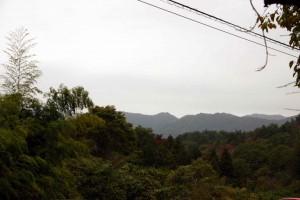 神奈川県西部