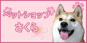 ブリーダー子犬販売専門店【ペットショップさくら】