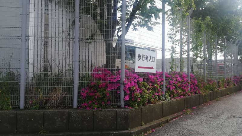 羽田空港 西貨物ターミナル前歩道6