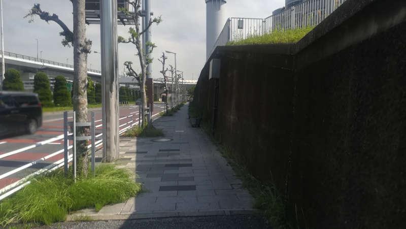 東京国際空港庁舎前歩道7