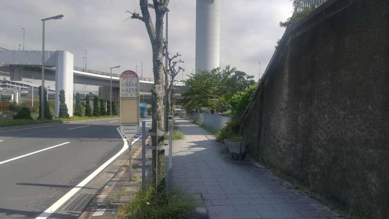 東京国際空港庁舎前歩道8