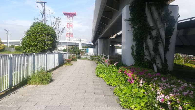 東京国際空港庁舎前歩道1