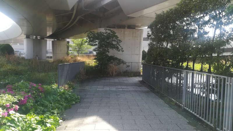 東京国際空港庁舎前歩道12