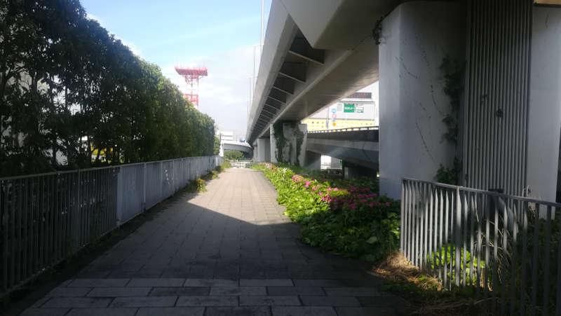 東京国際空港庁舎脇歩道4