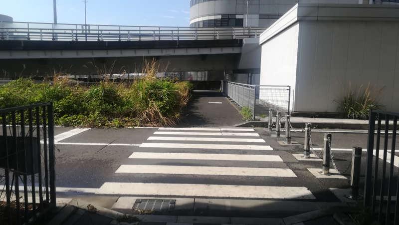 東京国際空港庁舎前歩道13