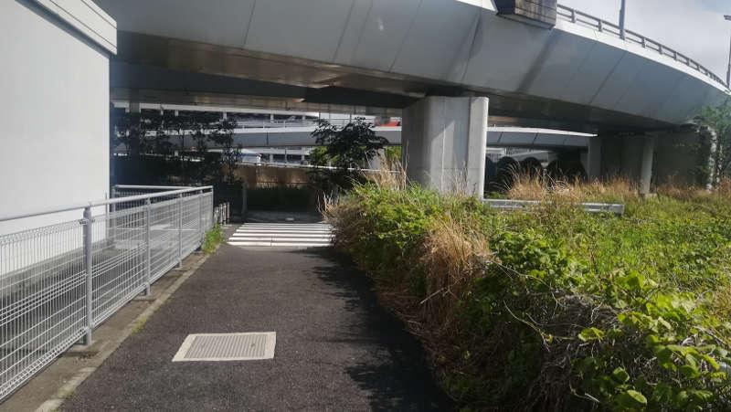 東京国際空港庁舎脇歩道3