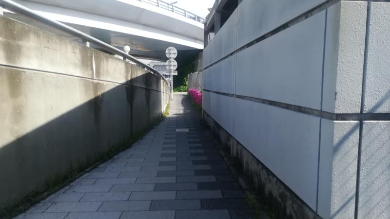羽田空港 国内線第1旅客ターミナルビル 北エントランス前5