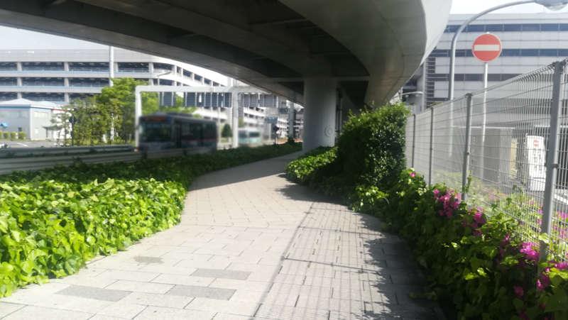 羽田空港 国内線第1旅客ターミナルビル 北エントランス前7